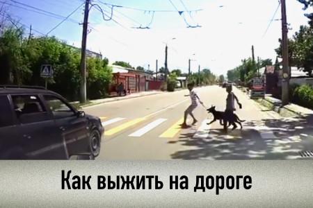 Почему погибают пешеходы