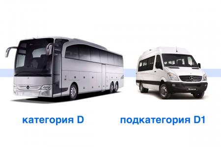 Категория D и D1 в чем разница?